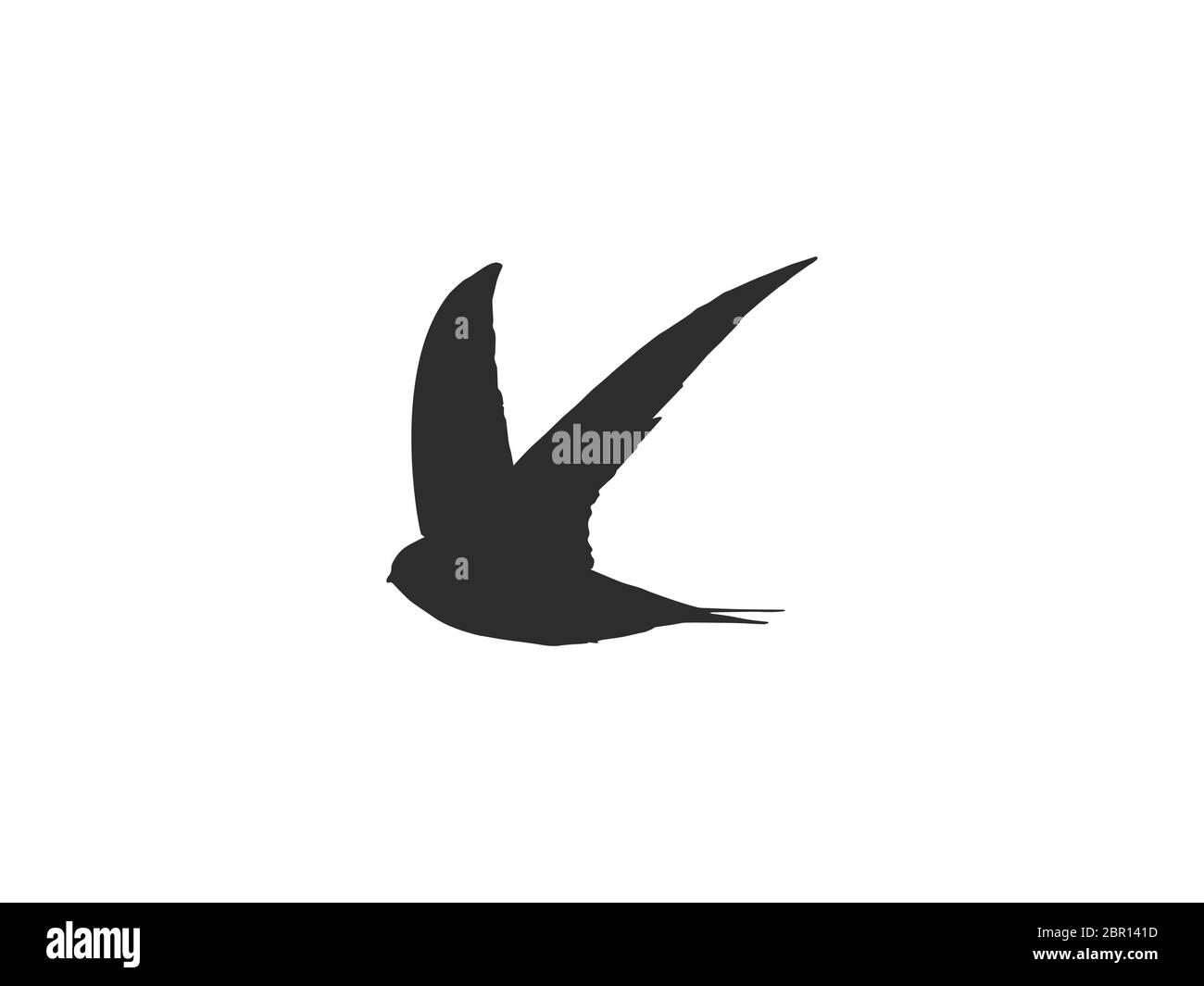 swallow emblem high resolution stock photography and images alamy https www alamy com bird nature icon vector illustration flat design image358369577 html