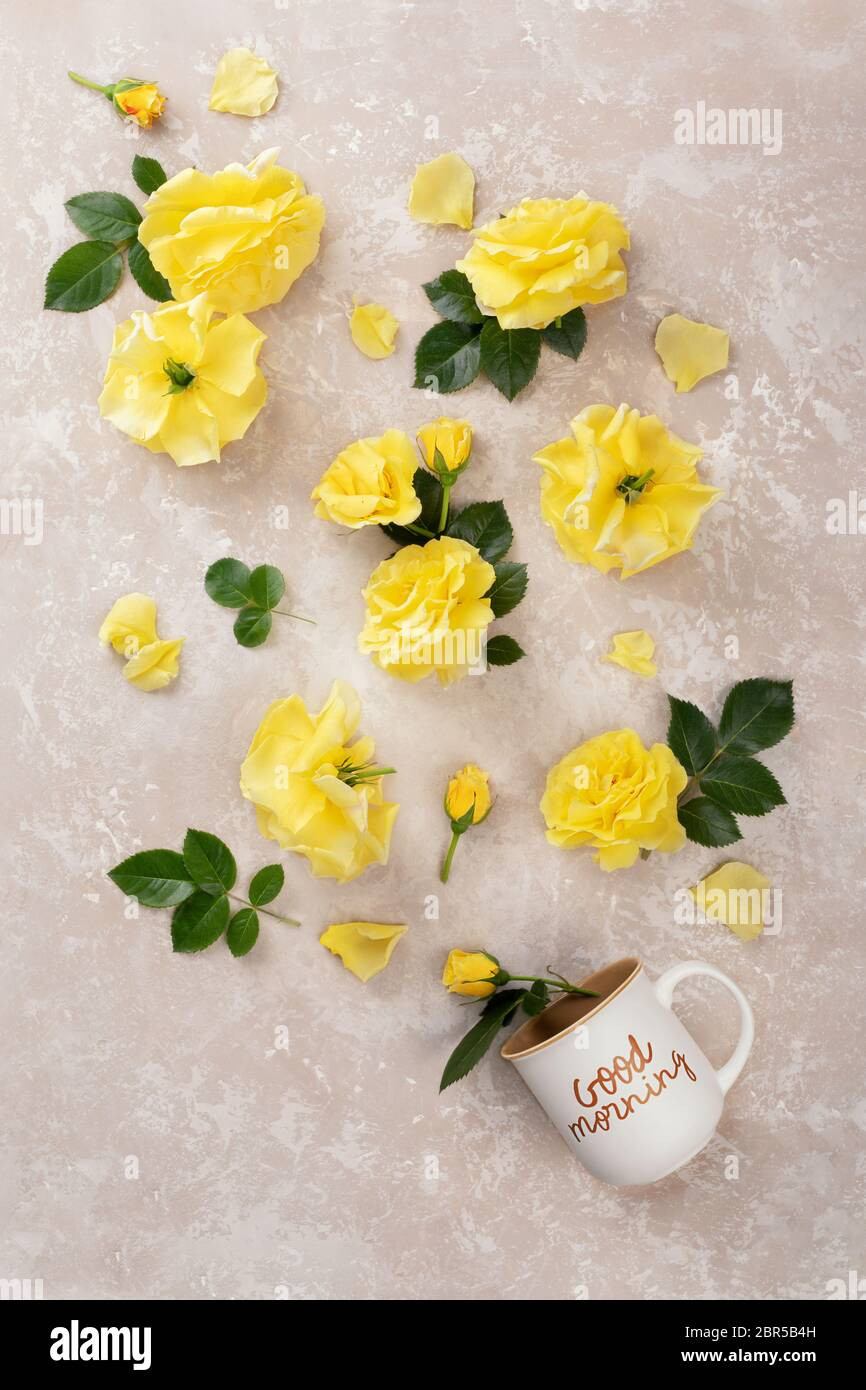 Good Morning Rose High Resolution Stock Photography And Images Alamy