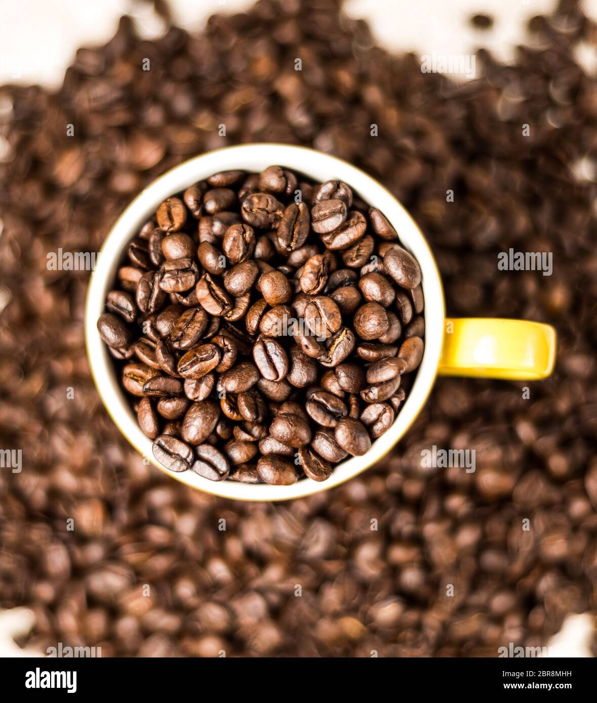 Brown roasted coffee beans, seed on dark background. Espresso dark, aroma, black caffeine drink. Closeup isolated energy mocha, cappuccino ingredient. Stock Photo