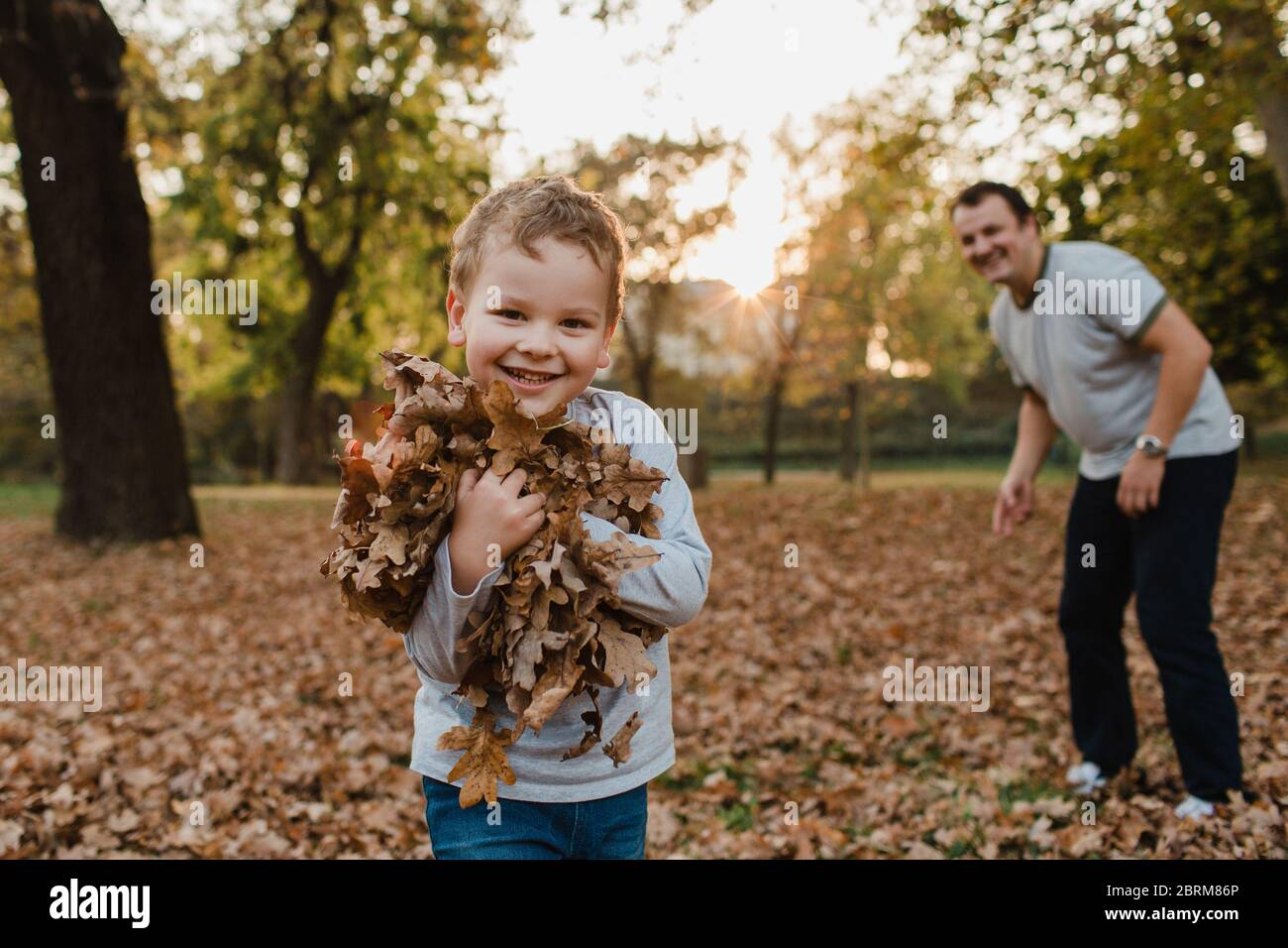 Young boy collecting autumn leaves with father. Cute child clasping an armful of dry brown leaves and smiling towards the camera with his father. Stock Photo