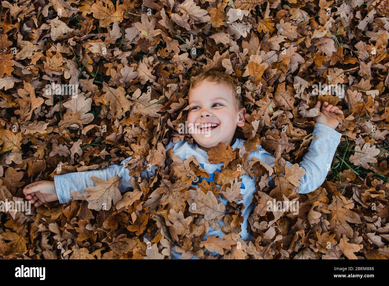Young boy lying on autumn leaves on ground. Cute child covered in dry brown autumn leaves smiling and looking away. Stock Photo