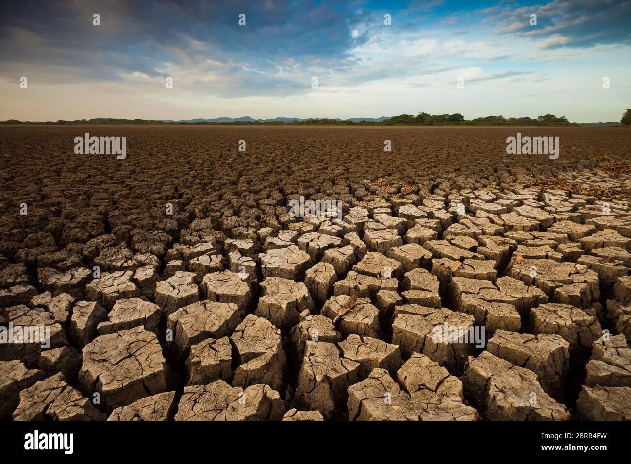 Drought in the lake of Cienaga de las Macanas, El Rincon, Herrera province, Republic of Panama. Stock Photo