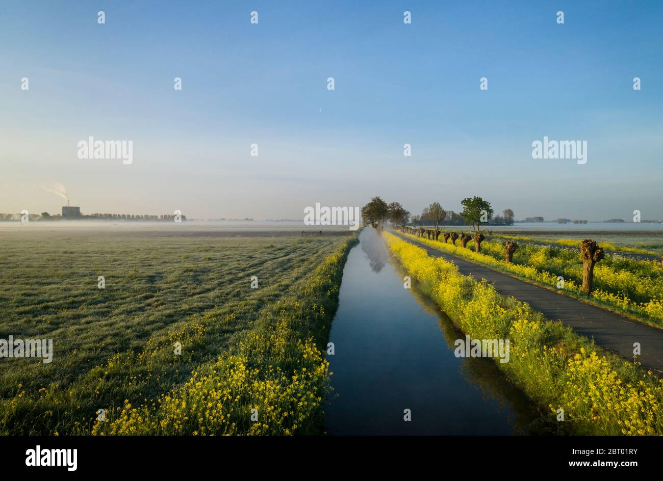 Early morning view of fields and path along drainage ditch in coastal area of The Netherlands in spring. Stock Photo