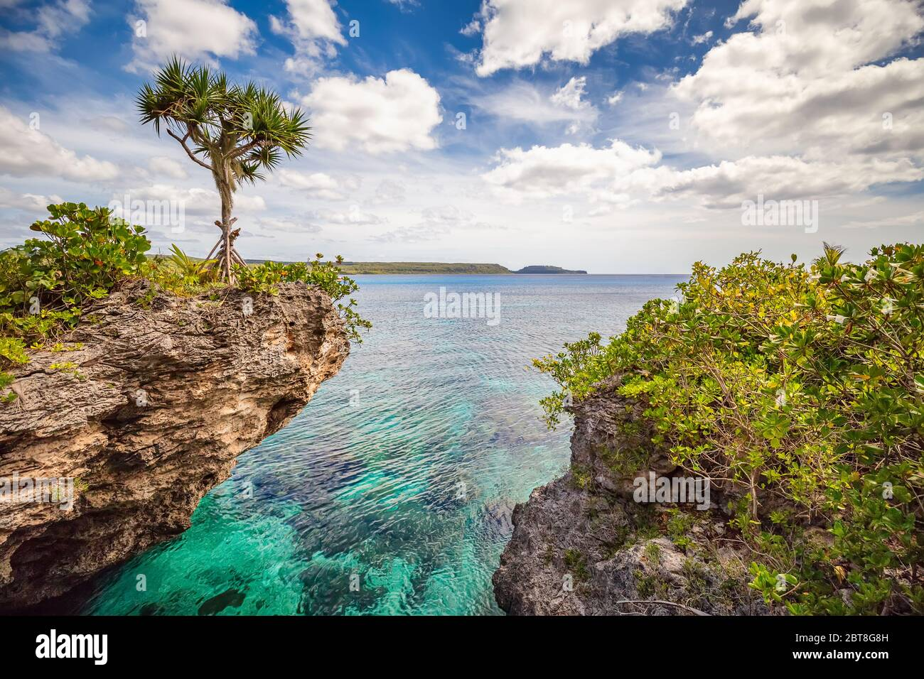 Scenic landscape with a single tree on top of a curved cliff with beautiful turquoise waters, blue sky and clouds on the Island of Mare, New Caledonia Stock Photo