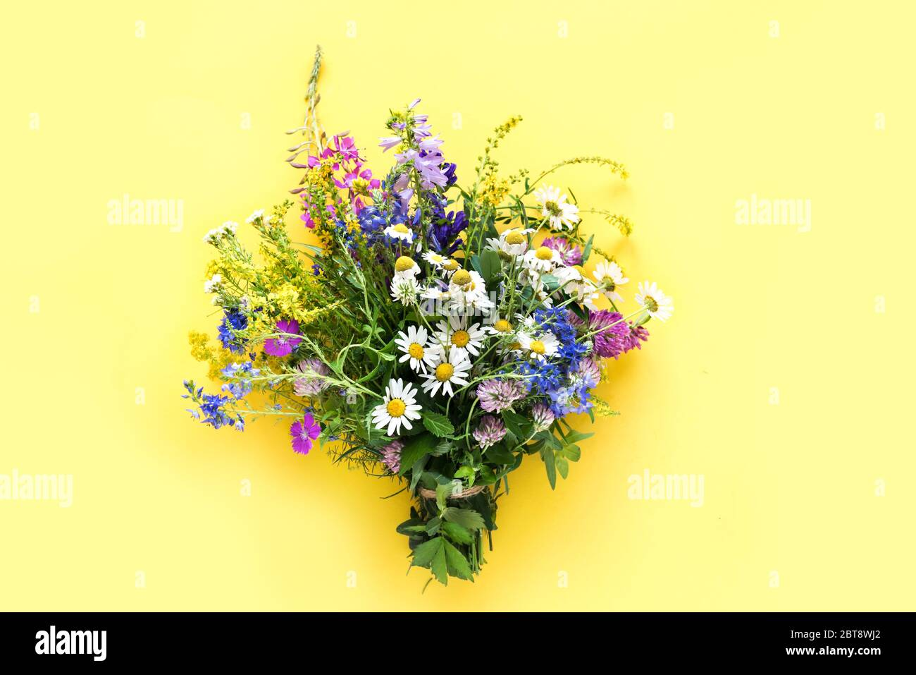 Wild summer flowers, bunch of meadow flowers on yellow background, top view, copy space. Stock Photo