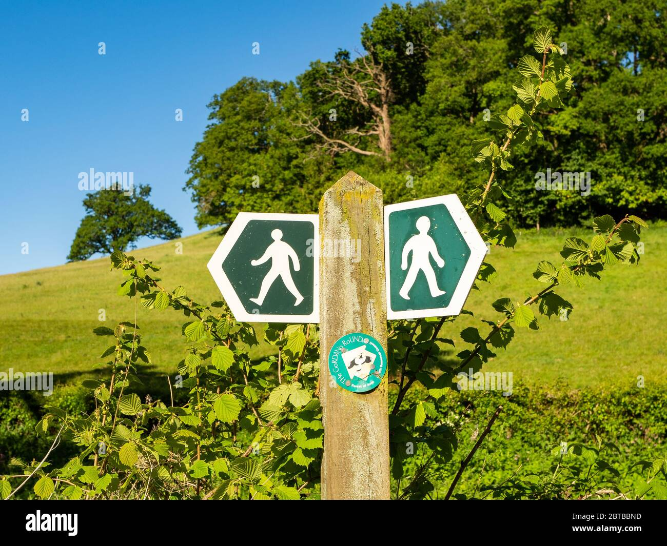 Waymarker on the Gordano Round a circular long distance footpath in North Somerset UK Stock Photo