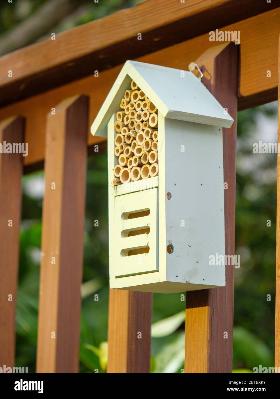 Bee and pollinator house. Provides nesting cavities for solitary bees and hiding place for polllinators. Stock Photo