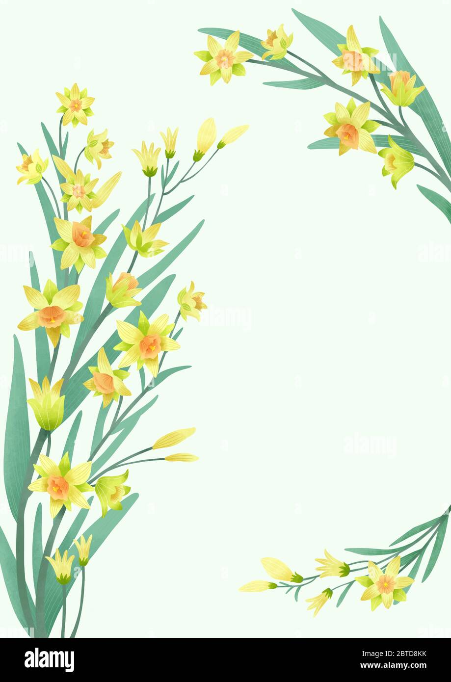 Spring Grass Border With Early Spring Flowers And Butterfly Isolated On  White Background Illustration Of Colored Tulips Daffodils And Daisies  Garden Bed Springtime Design Element Vector Eps 10 Stock Illustration -  Download