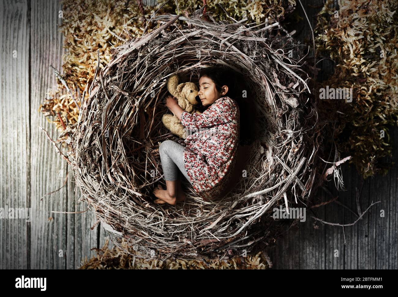 little girl sleeping peacefully and quietly in a nest, concept of protection and security for children, retro style colors, sign of love for children Stock Photo