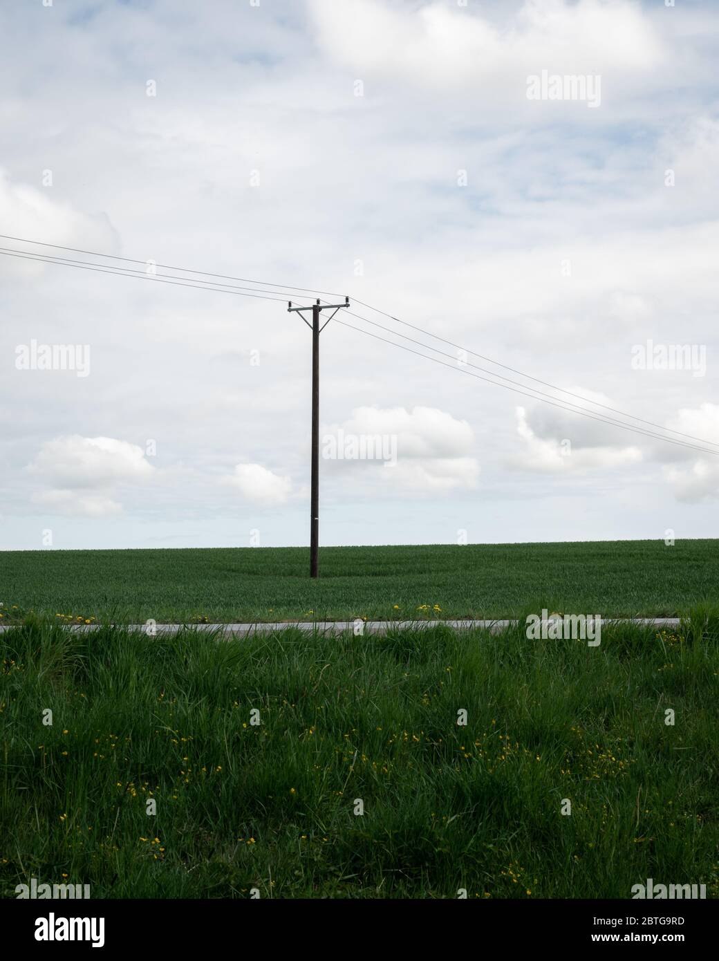 A single power line pole stands tall above the green fields in the southern Sweden landscape called Skåne Stock Photo