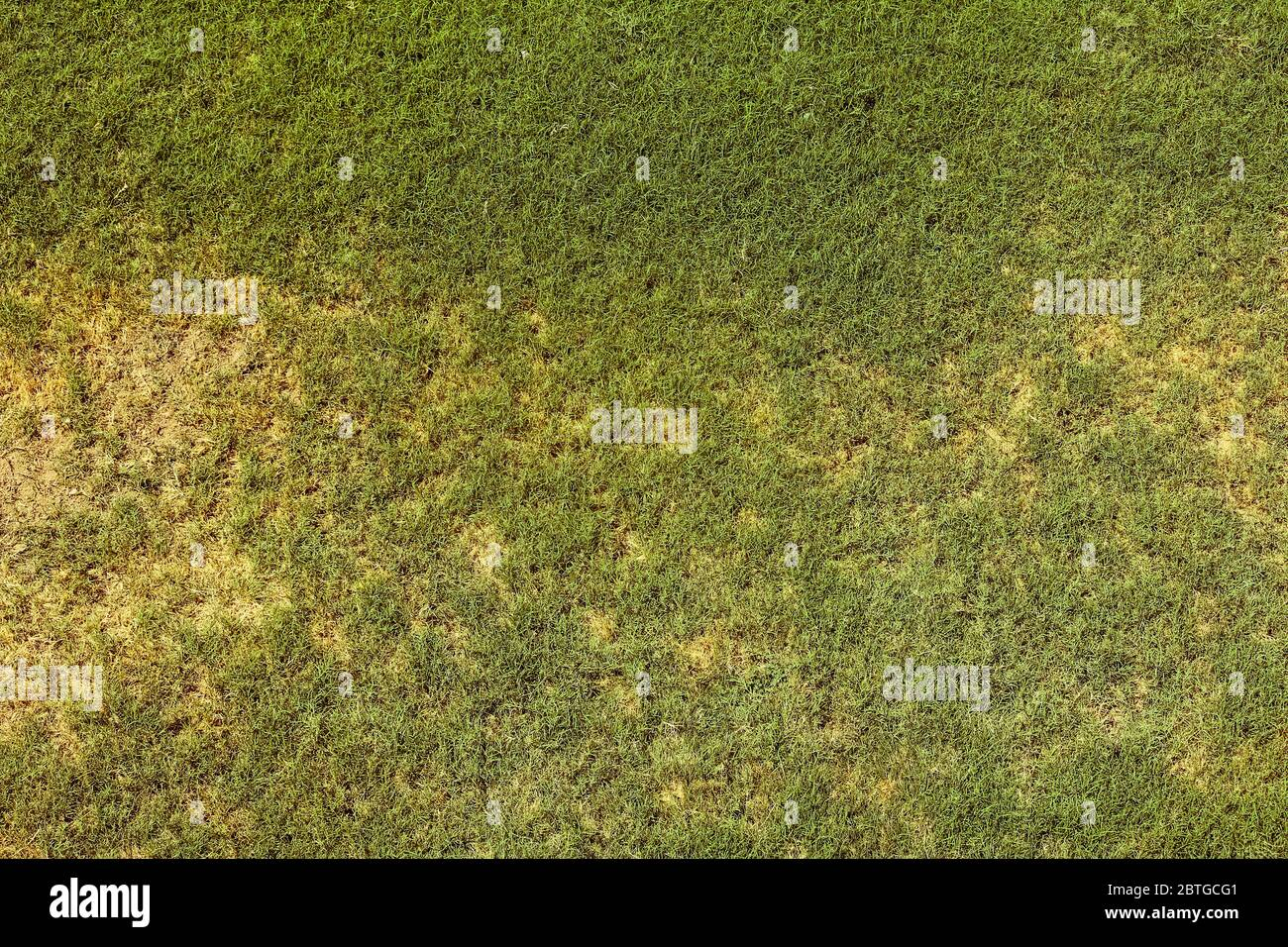 Top view of bright grass garden Idea concept used for making green backdrop, lawn for training football pitch, Grass Golf Courses green lawn pattern t Stock Photo