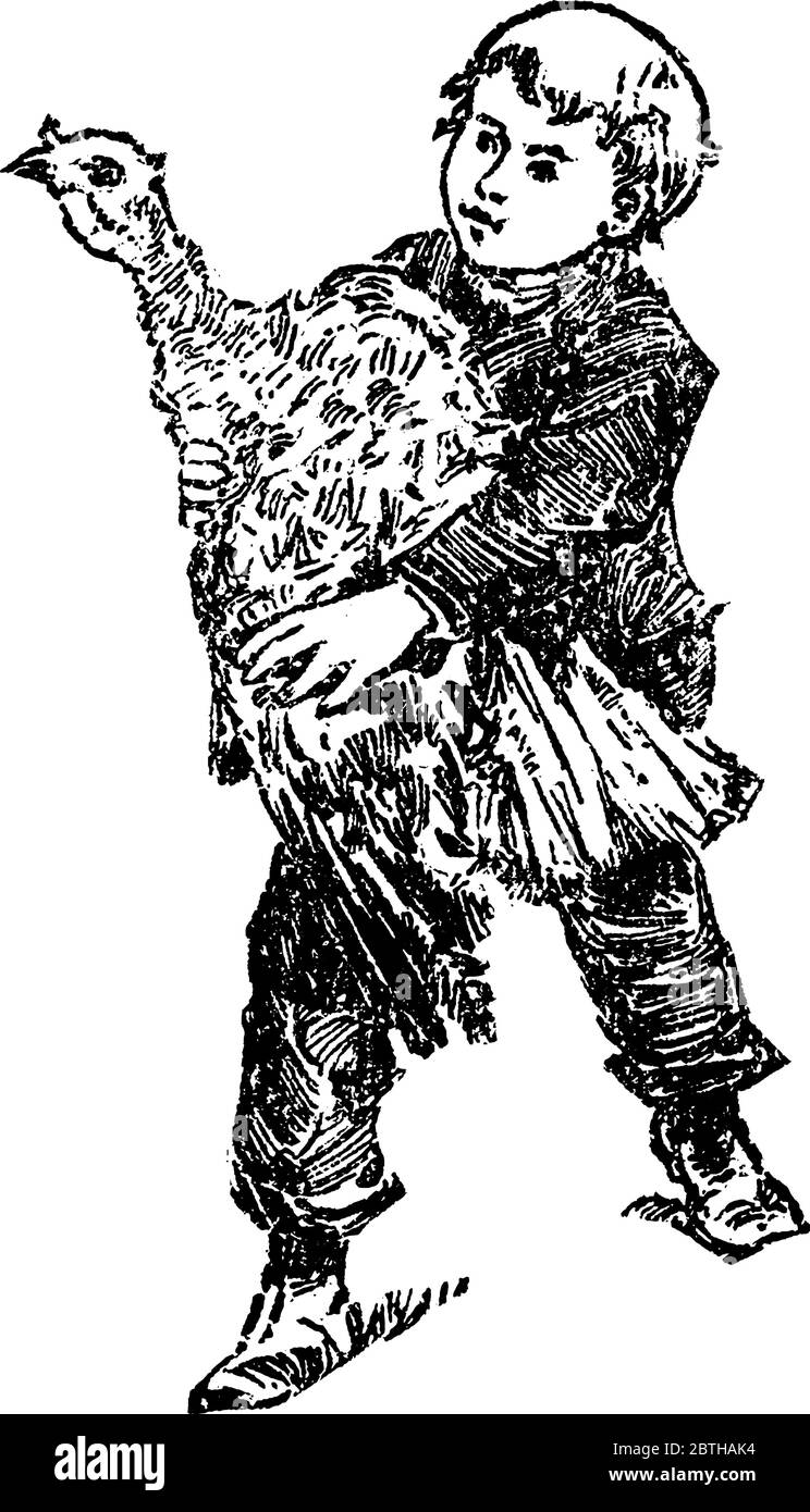 A boy holding a domestic turkey in his hands, domestic turkey is a large ground-dwelling bird that is 36-44 inches in length, vintage line drawing or Stock Vector