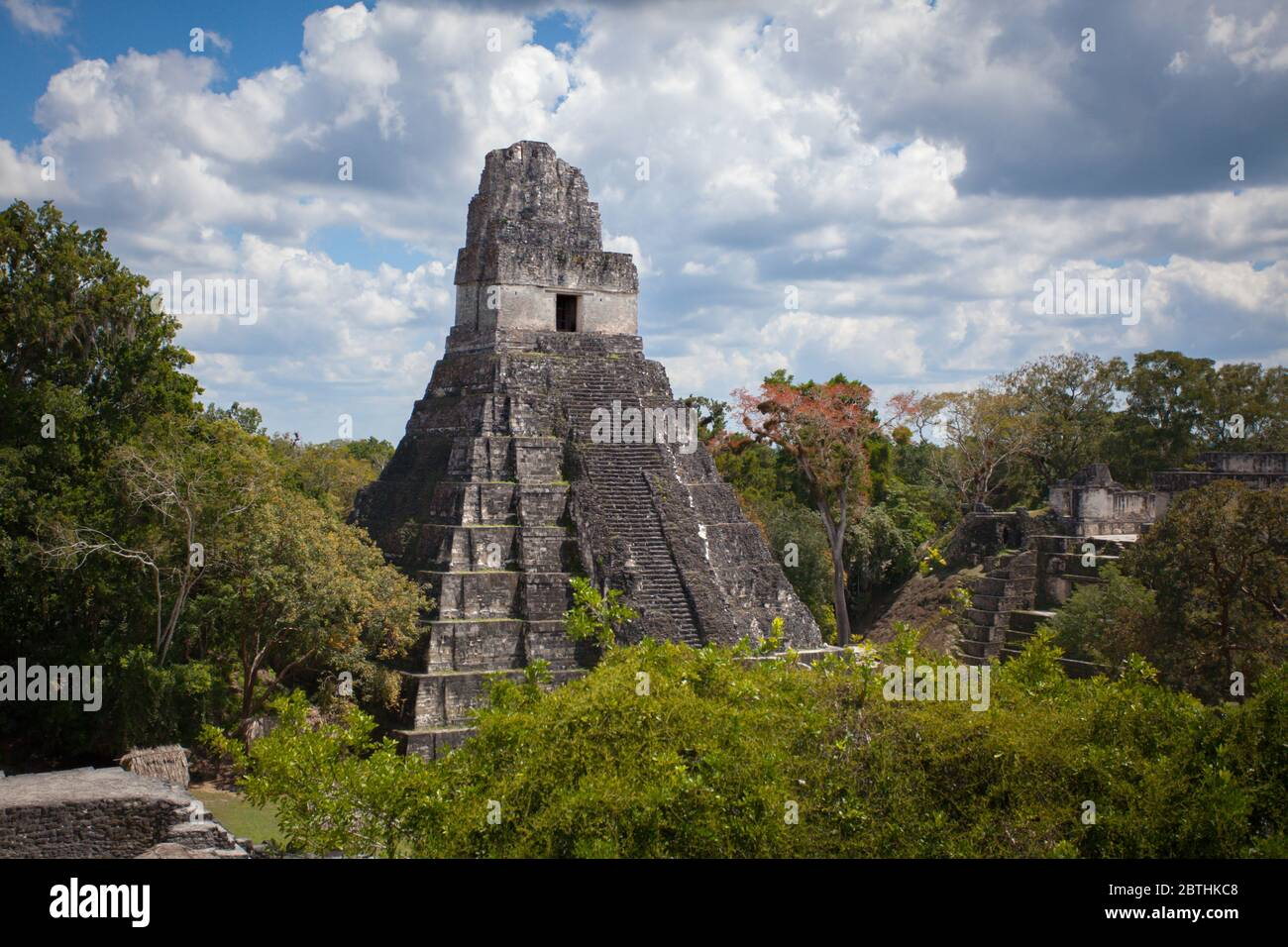 Tikal Mayan Ruins Temple Of The Grand Jaguar El Peten Guatemala ... | 956x1300