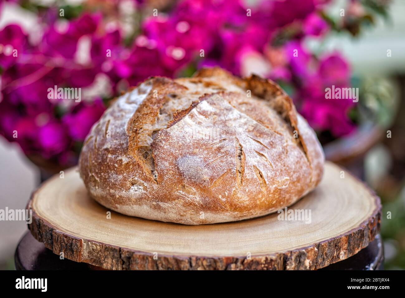 Artisan loaf of traditional Homemade sourdough Boule bread with crust on a wooden board Stock Photo