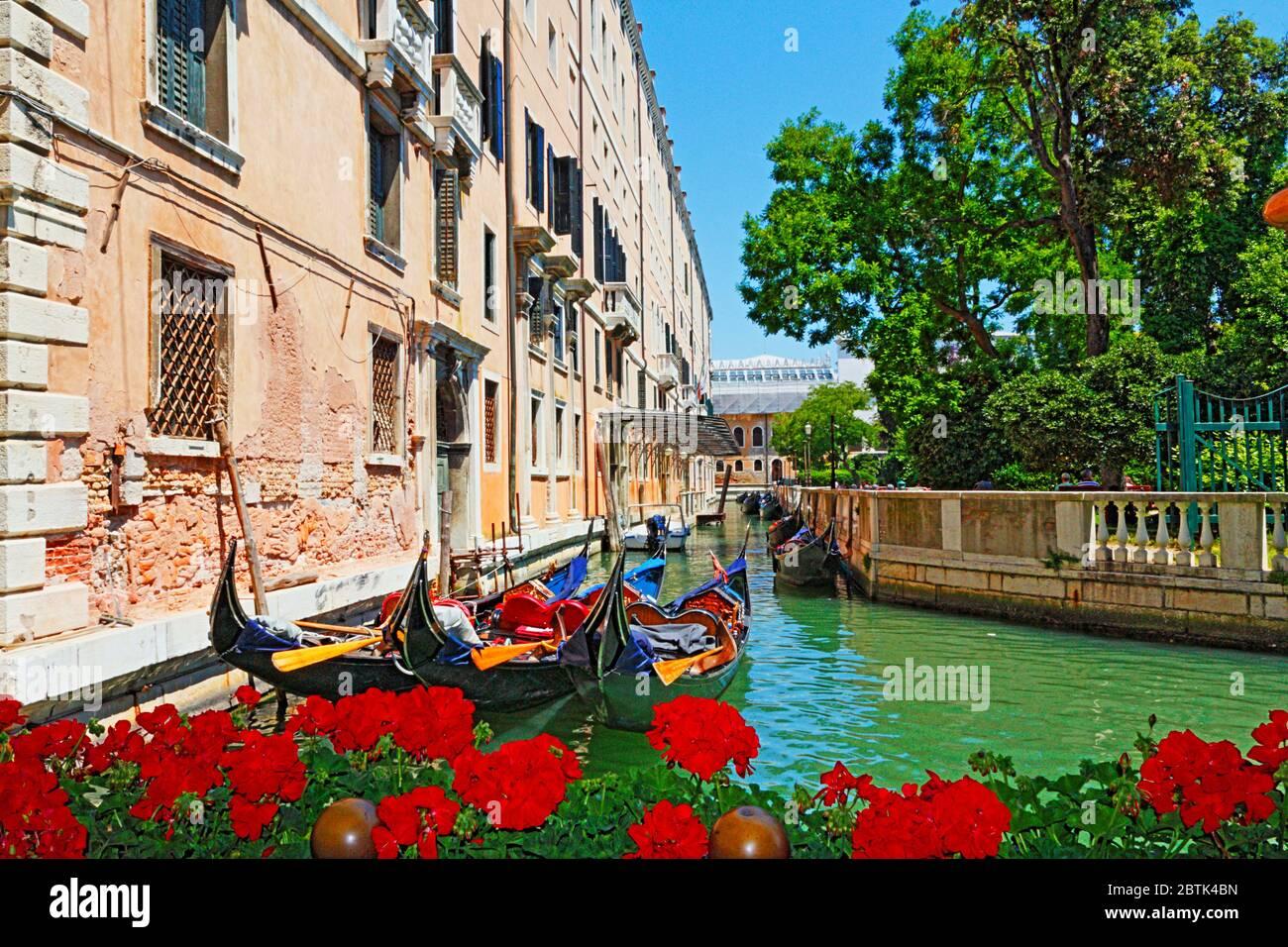 Обои небо, вода, цветы, тучи, дома, Венеция, канал, улочка, Venice ... | 956x1300