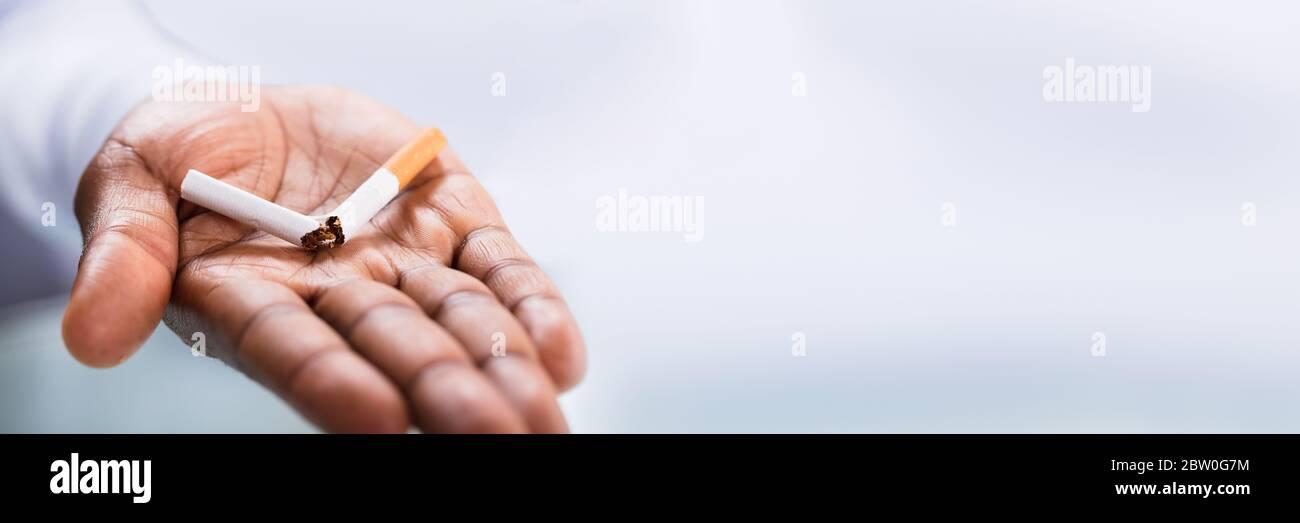 African American Stop Smoking. Broken Cigarette In Hand Stock Photo