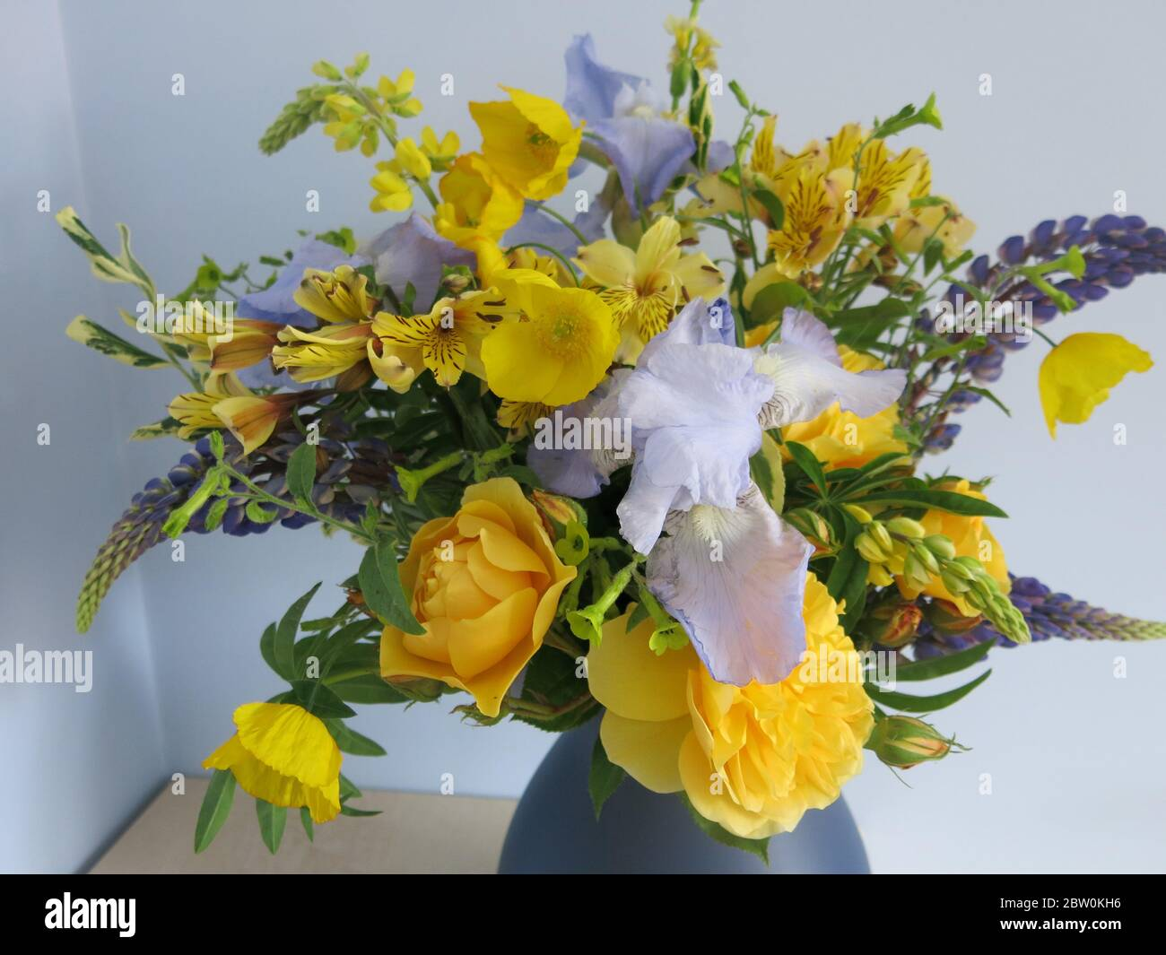 Floristry At Home With A Flower Arrangement Of Cut Flowers From An English Garden Iris Roses And Lupins In Shades Of Blue And Yellow Stock Photo Alamy