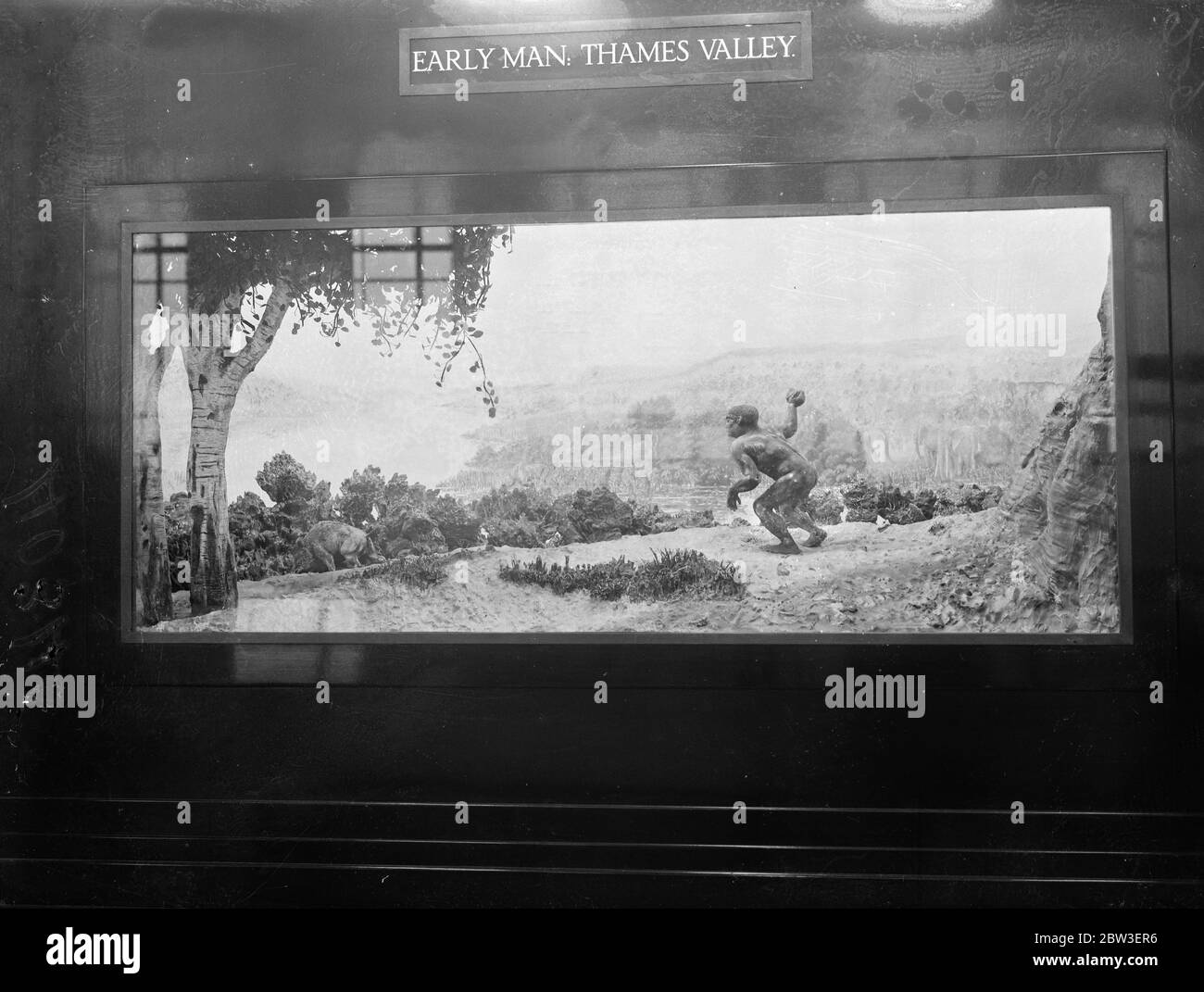 Display at the Geological Survey and Museum ( Geological Museum ) , South Kensington . Display of the first man in the Thames Valley hunting wild bear . 15 January 1935 Stock Photo