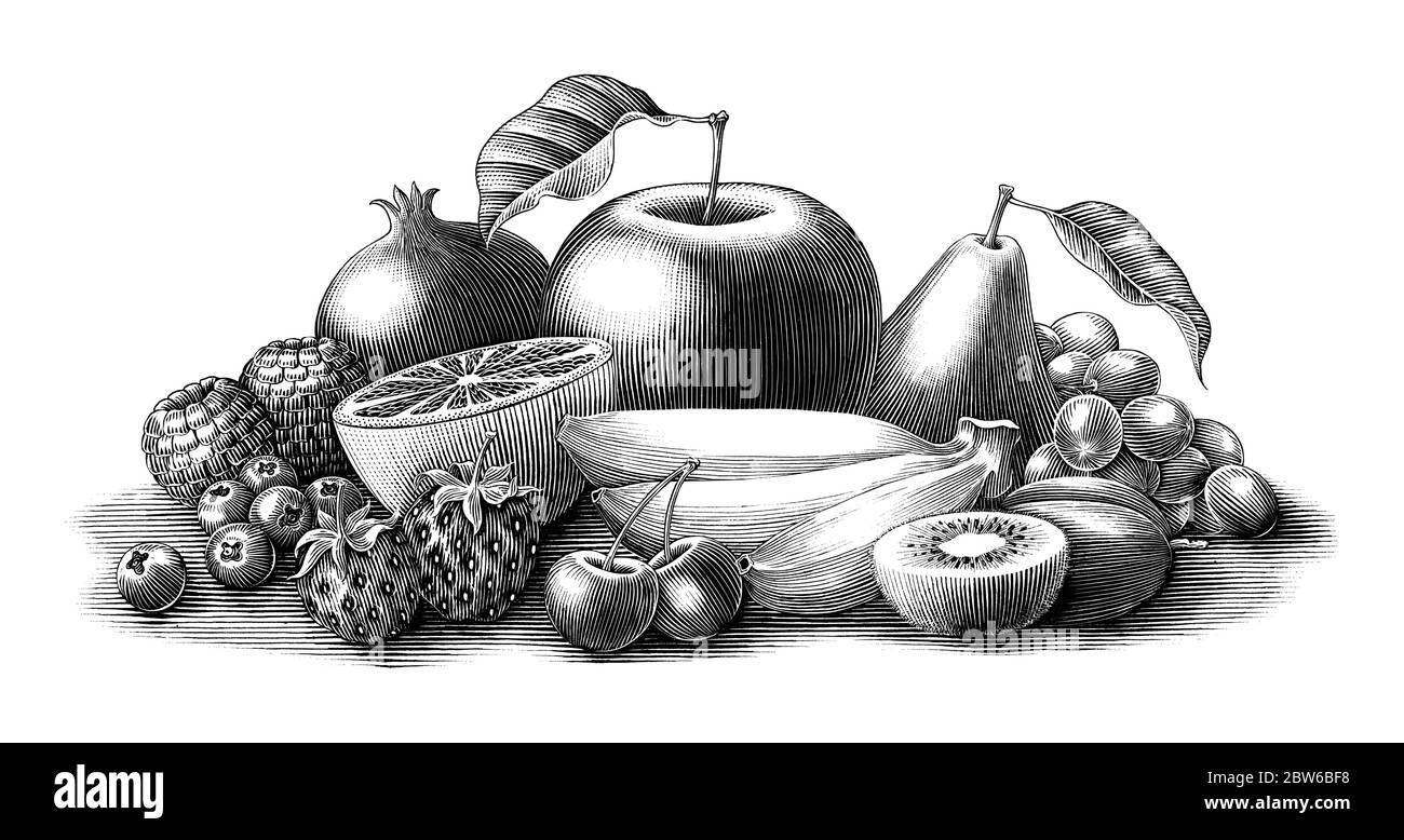 Fruits illustration vintage engraving style black and white clip art isolated on white background Stock Vector