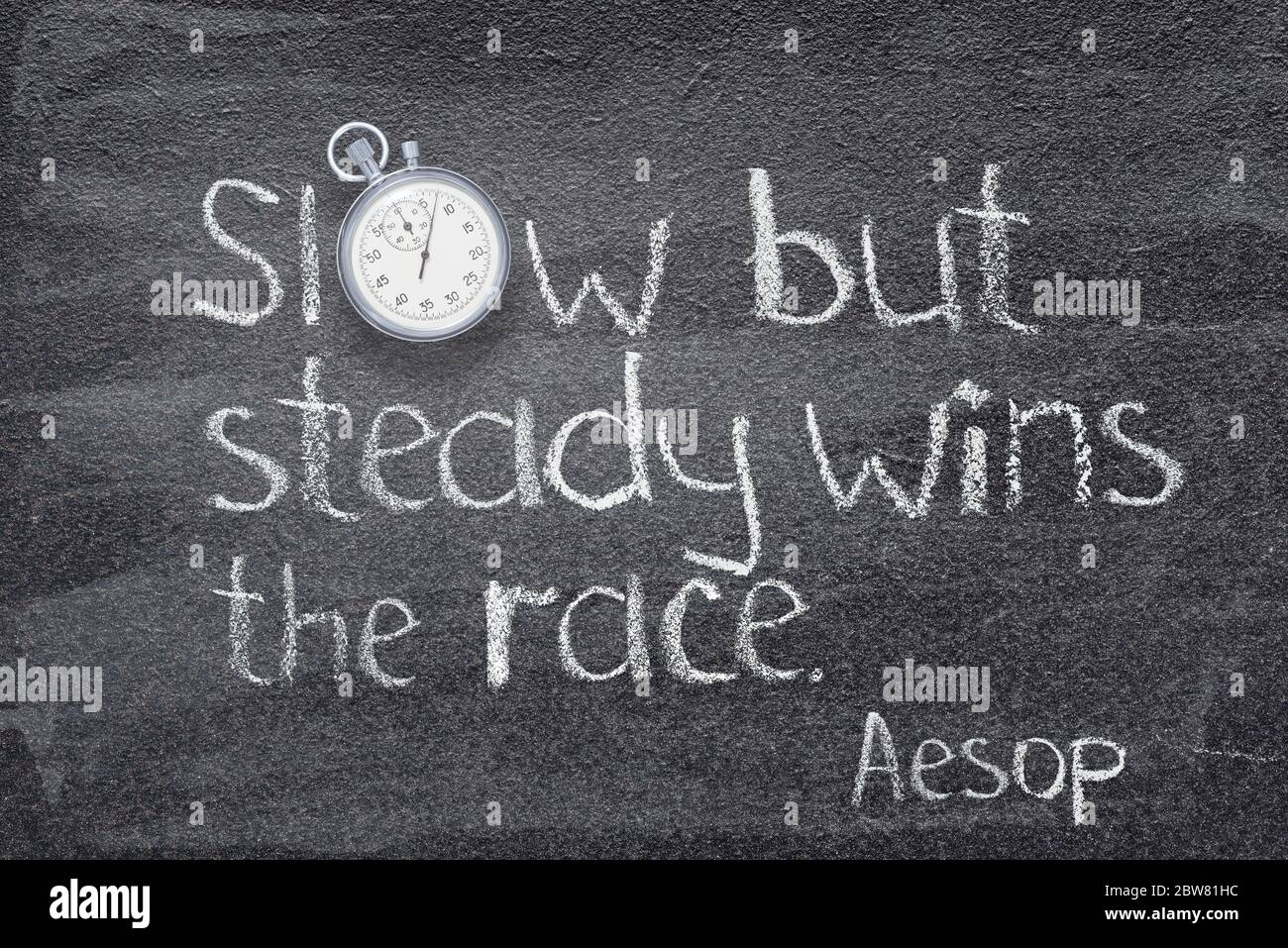 Slow And Steady Wins The Race High Resolution Stock Photography And Images Alamy