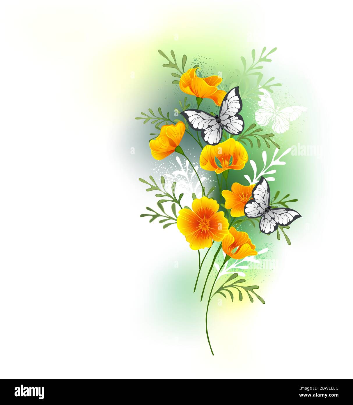 Artistically painted, small bouquet of orange Caliphony poppy flowers with white butterflies sitting on them against white background stained with gre Stock Vector