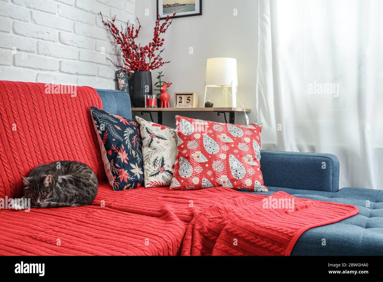 Christmas Decorations With Candles And Red Plaid On Couch With Cat In Living Room All Photos In Frames On The Wall Made By Me Stock Photo Alamy