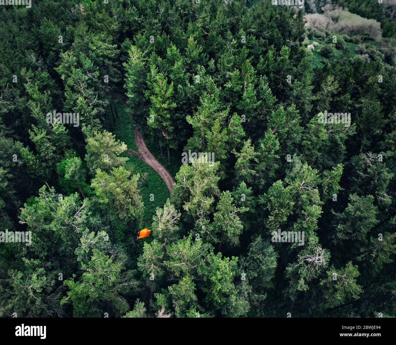 Aerial view of orange tent at forest in the mountains. Photo taken with Drone Stock Photo