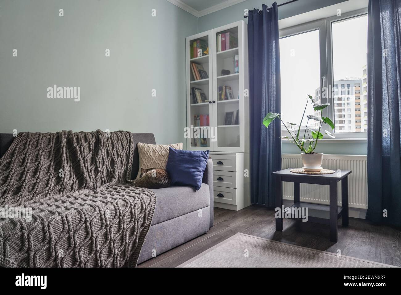Picture of: Light Cozy Teen Room With White Bookcases Grey Sofa And Blue Walls Stock Photo Alamy