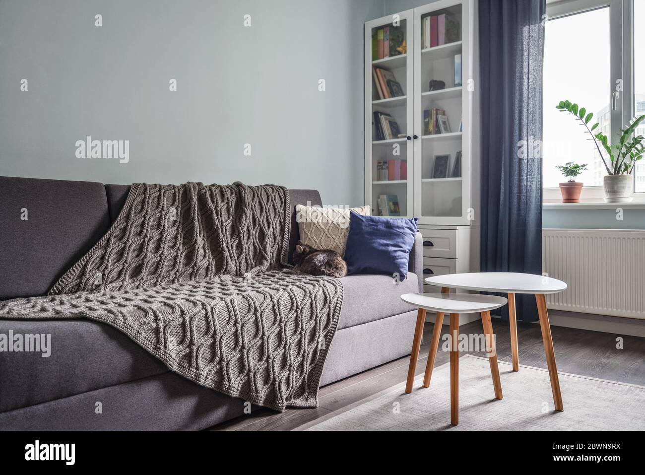Light Cozy Teen Room With White Bookcases Grey Sofa And Blue Walls Stock Photo Alamy