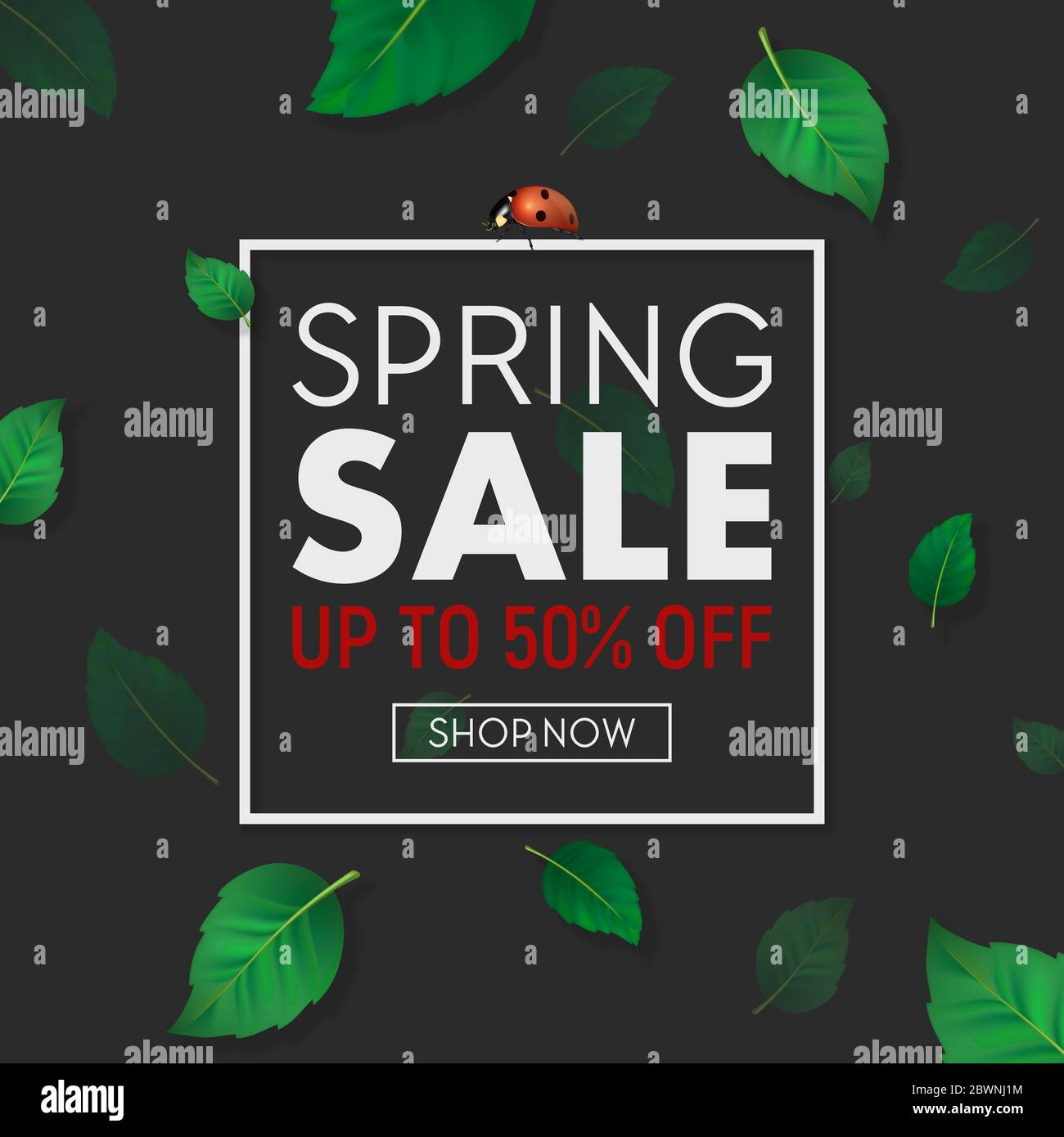 Spring Sale Background Banner With Frame Beautiful Green Leaves And Ladybug Design Template For Online Store Flyer Poster Shopping Selling Sign Stock Vector Image Art Alamy