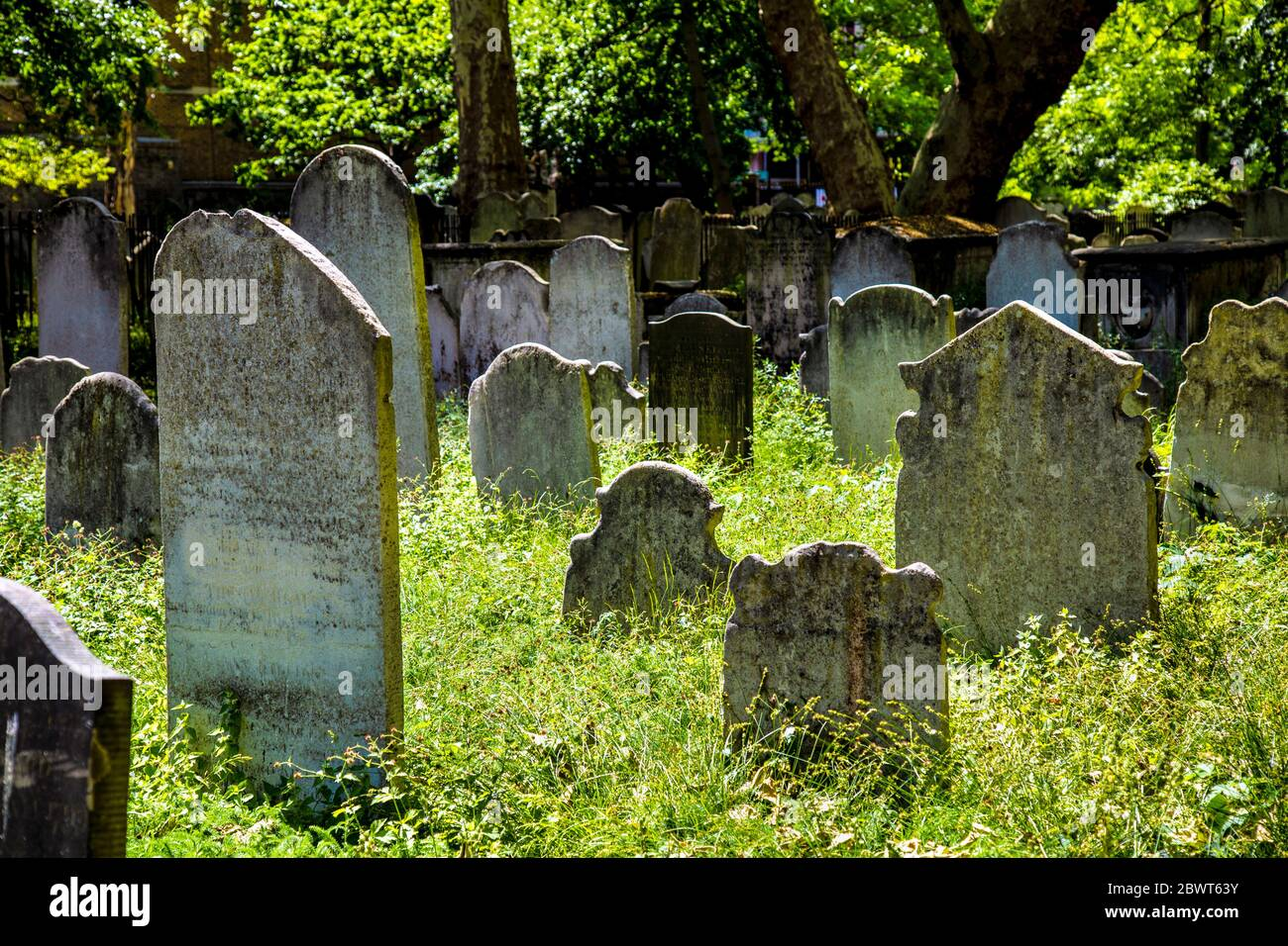 Headstones in tall grass at the Victorian Bunhill Fields Burial Ground, Old Street, London, UK Stock Photo