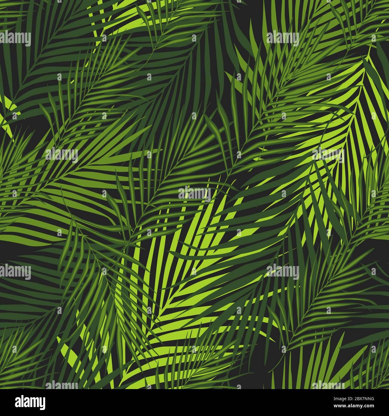 Abstract Exotic Plant Seamless Pattern On Black Background Tropical Pattern Vector Botanical Background Palm Leaves Wallpaper For Book Covers Des Stock Vector Image Art Alamy
