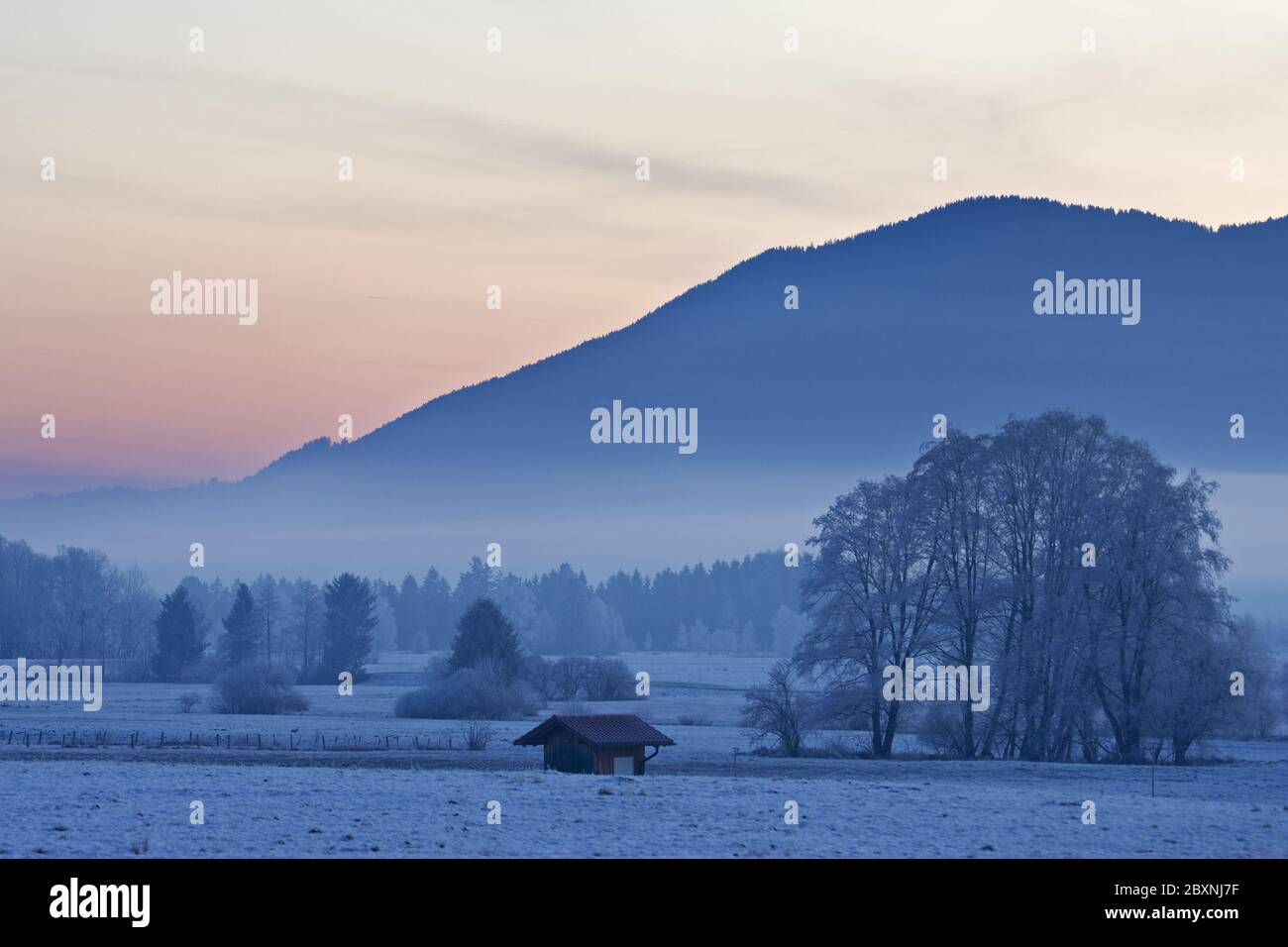 winter morning in bavarian pre-alps, germany Stock Photo