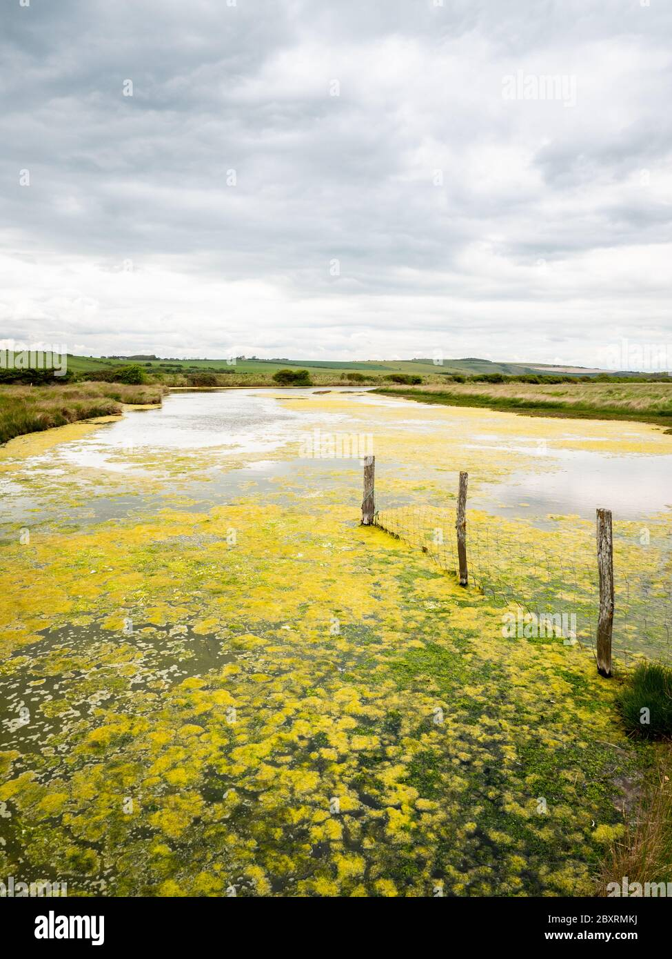 Cuckmere Haven flood plains, South Downs, England. A view over the plains of Cuckmere Haven in East Sussex on the south coast of England. Stock Photo