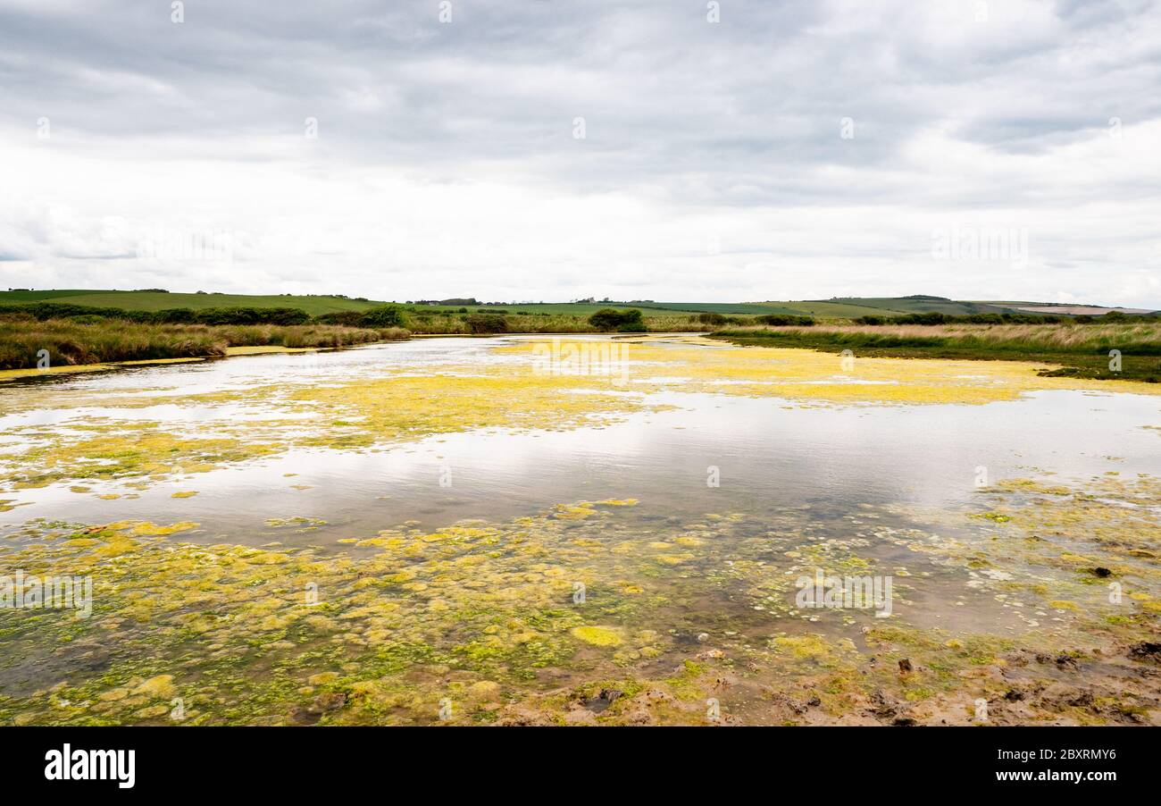 Cuckmere Haven, South Downs, UK. A view over the flood plains of the East Sussex landscape on the south coast of England. Stock Photo
