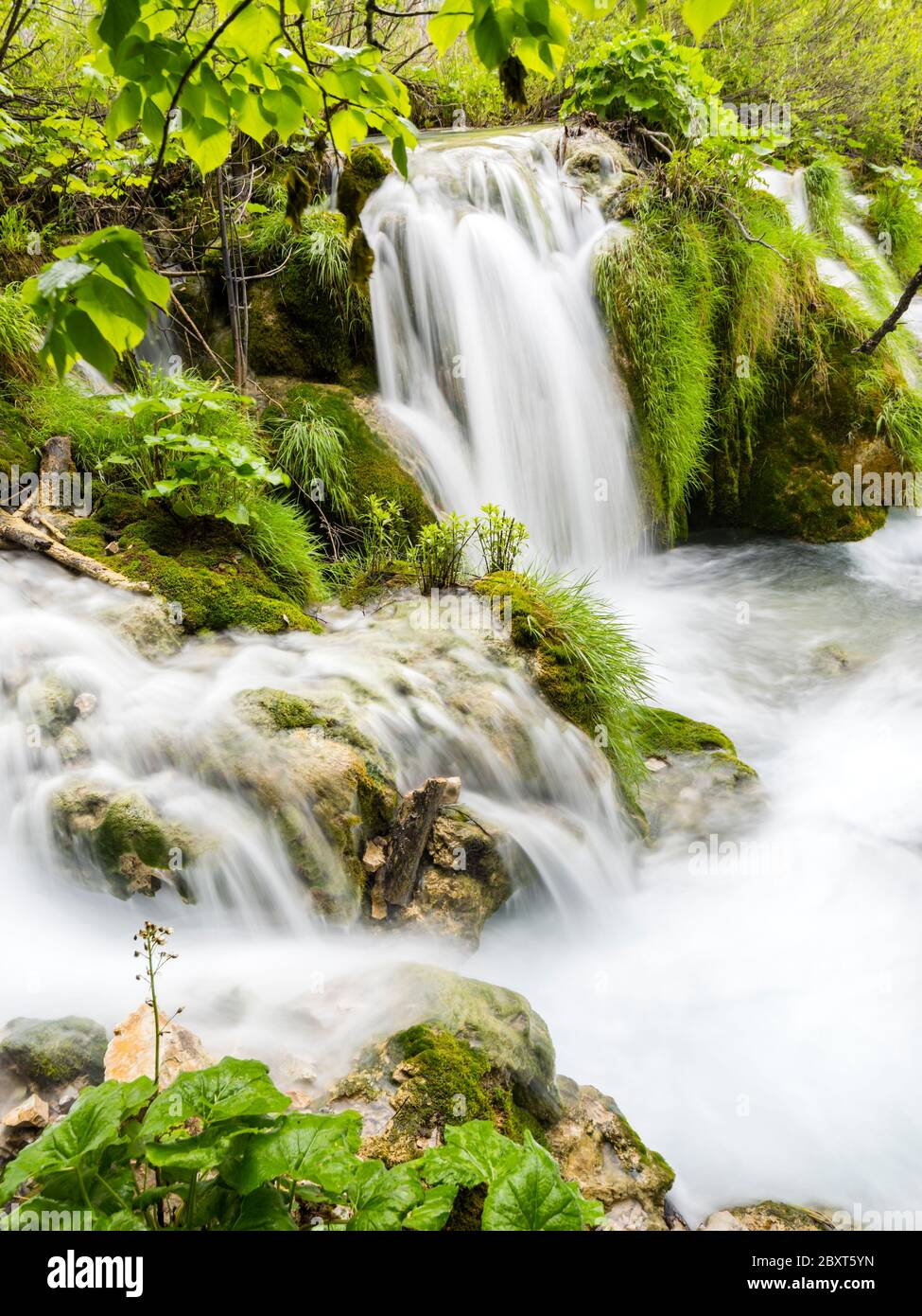 Plitvice lakes intensive vivid Green forest in Spring season in Croatia Europe empty cascading waterfall river flow riverflow long exposure Stock Photo