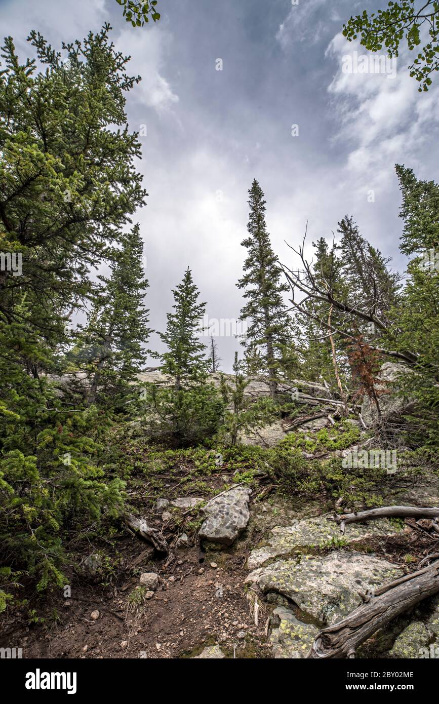 Trail Conditions on the Glacier Gorge Trail in Rocky mountain National Park near Mill's Pond Stock Photo