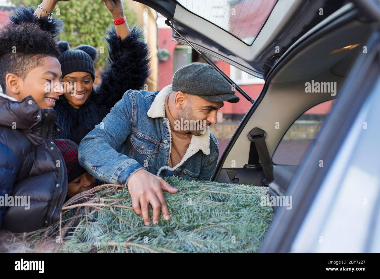 Family loading Christmas tree into car Stock Photo
