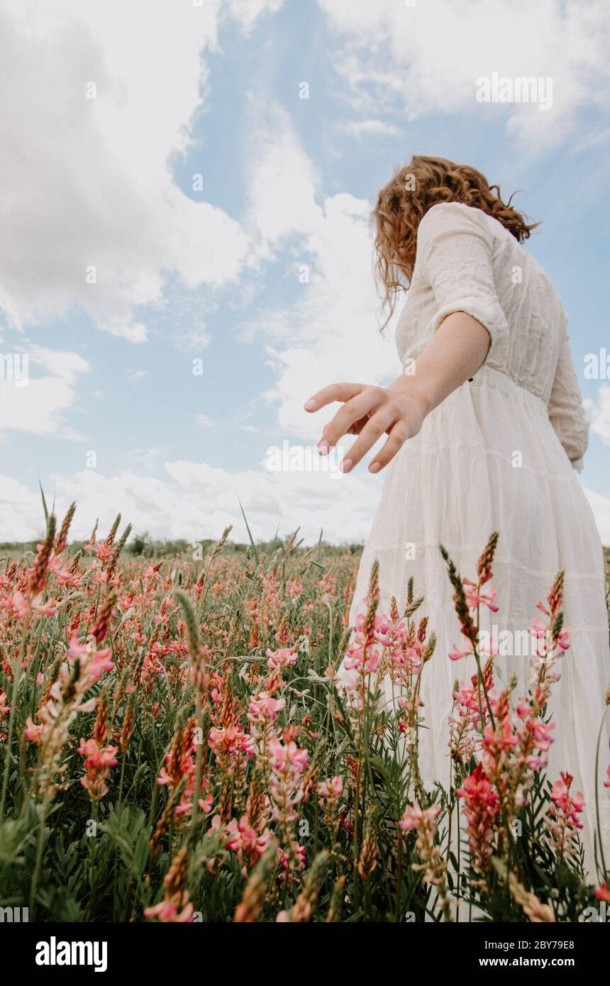 Back view on an angle of young woman in white long dress walking with hand out in a blossoming flower field Stock Photo