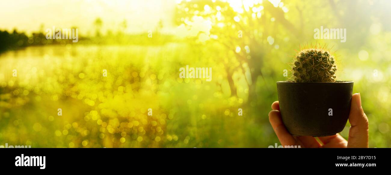 Blur Nature Background High Resolution Stock Photography And Images Page 30 Alamy