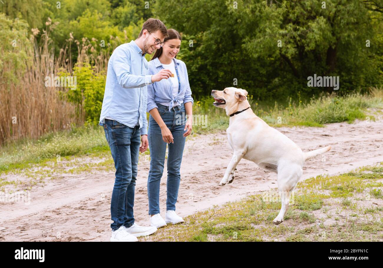 Young couple giving a treat to their obedient dog Stock Photo