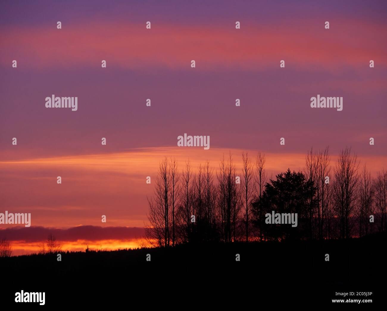 Evening mood in lapland Stock Photo