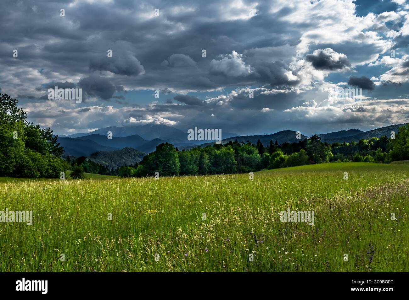 Mountains Of Alps And Rural Landscape In Austria Stock Photo