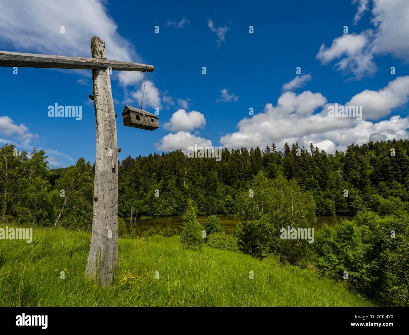Interesting artistic work hanging small model house atop hill near lake Mrzla vodica Croatia Europe Stock Photo