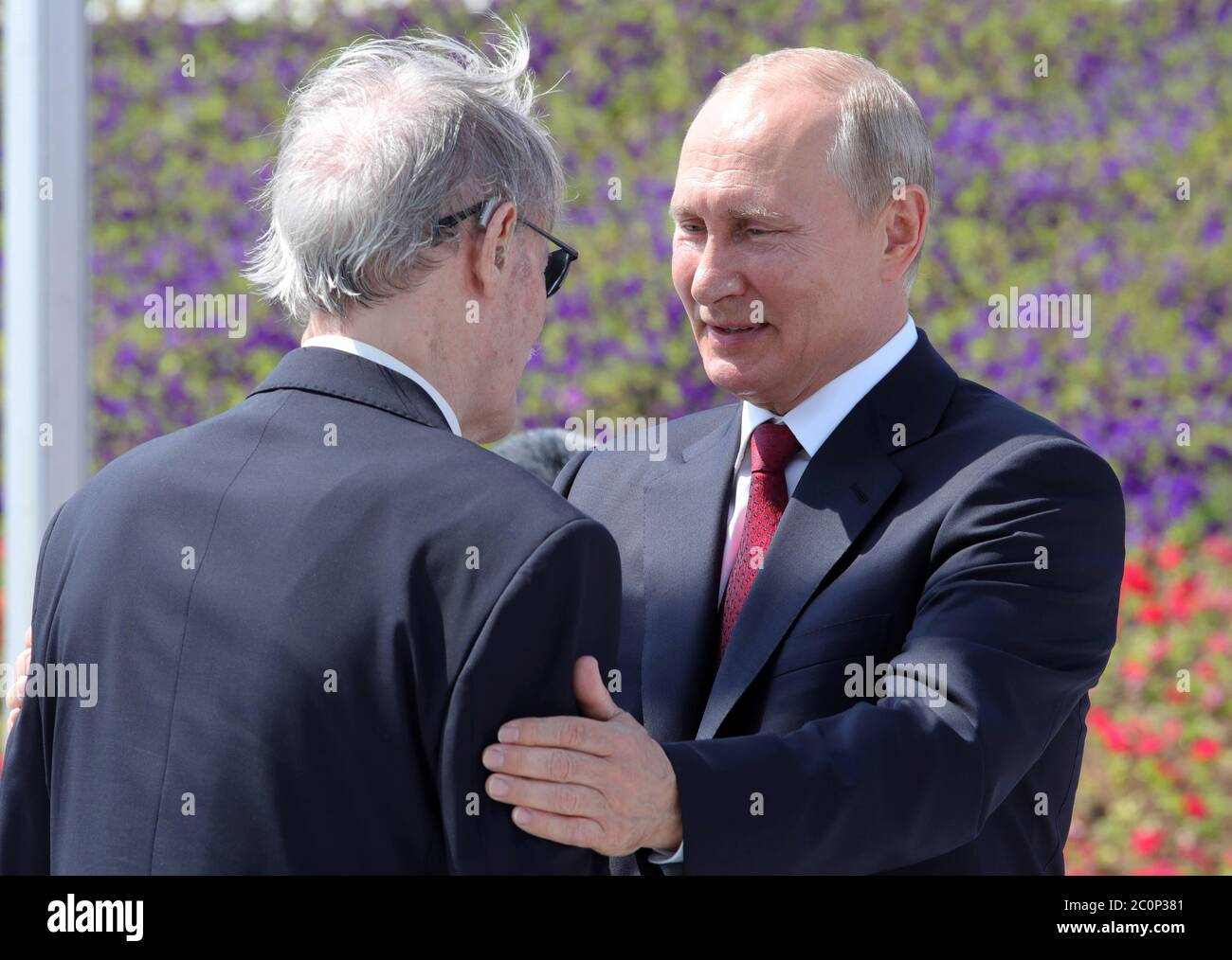 Russian President Vladimir Putin Artistic High Resolution Stock Photography And Images Alamy