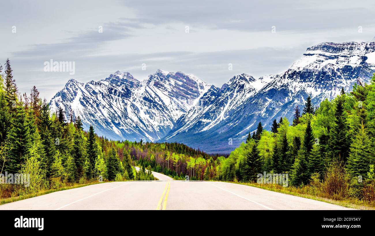 Icefields Parkway winding through the Rocky Mountain Range between the town of Jasper and the Columbia Ice Fields in Jasper National Park, Canada Stock Photo