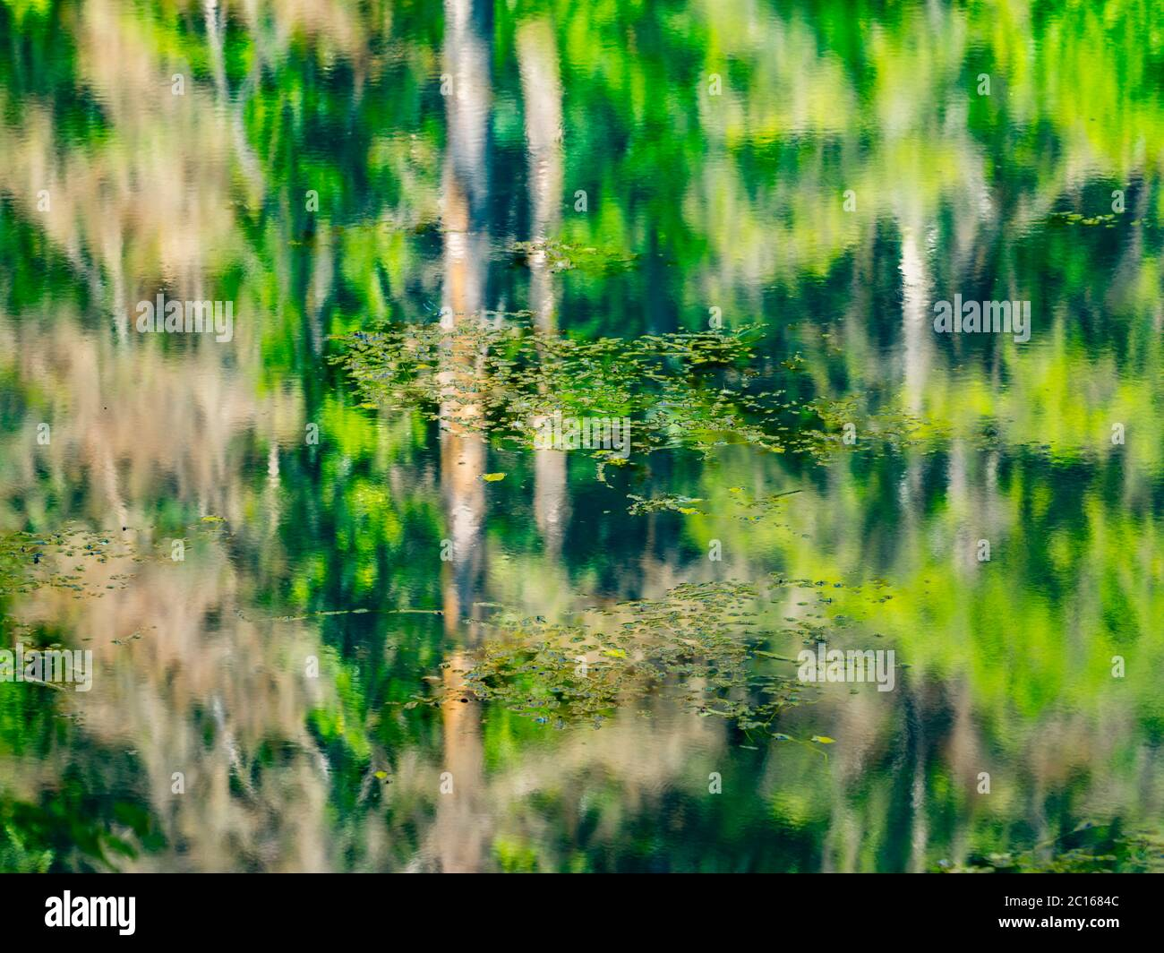 Lake with waterfall and derelict old sawmill and watermill Cogrljevo jezero Croatia Europe almost artistic water reflections of Green Spring forest Stock Photo