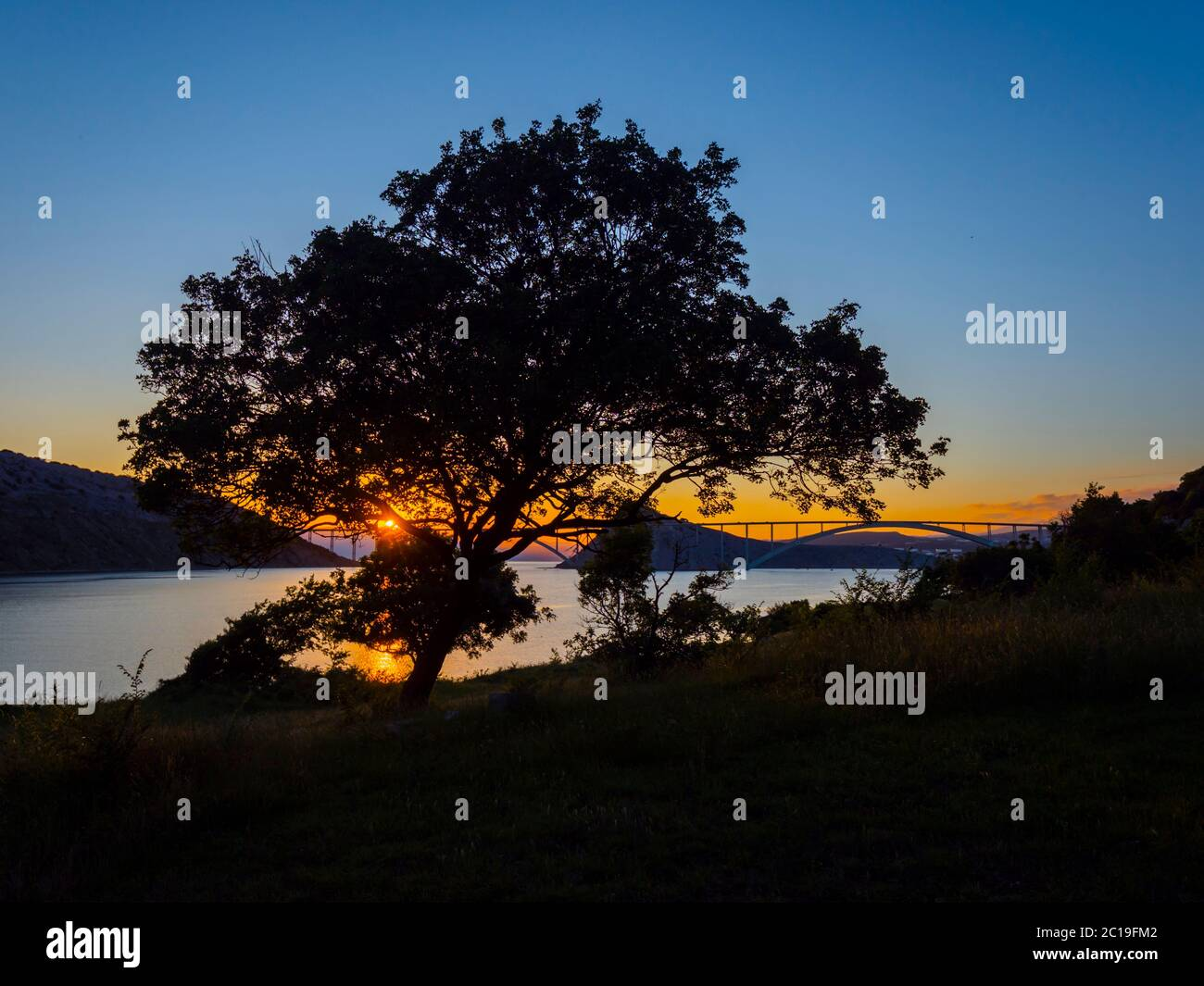 Sunset landscape bridge mainland to island Krk Croatia see through dominant tree Stock Photo