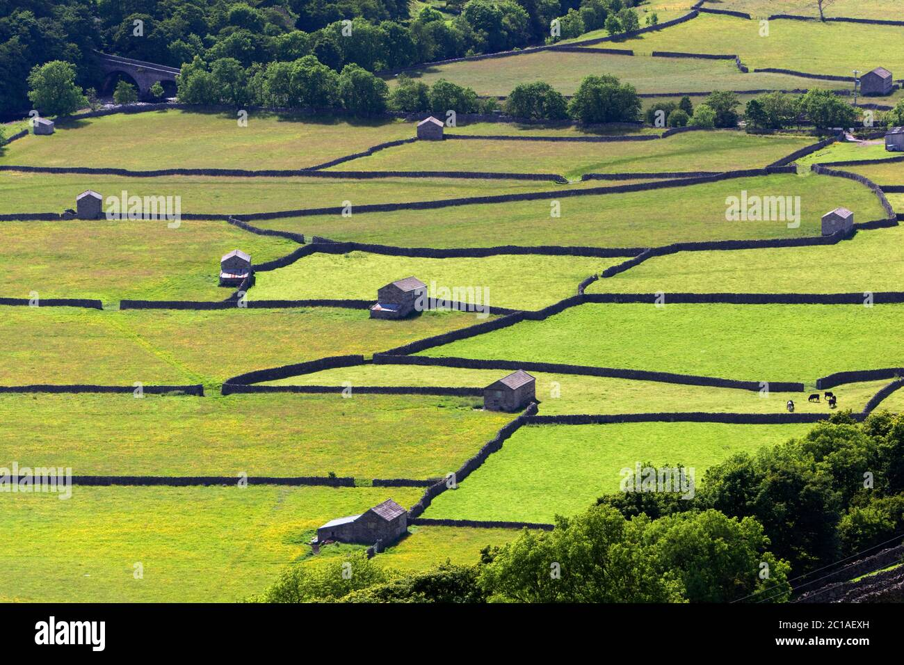 Dry stone walls and barns in Swaledale, Gunnerside, Yorkshire Dales National Park, North Yorkshire, England, United Kingdom, Europe Stock Photo