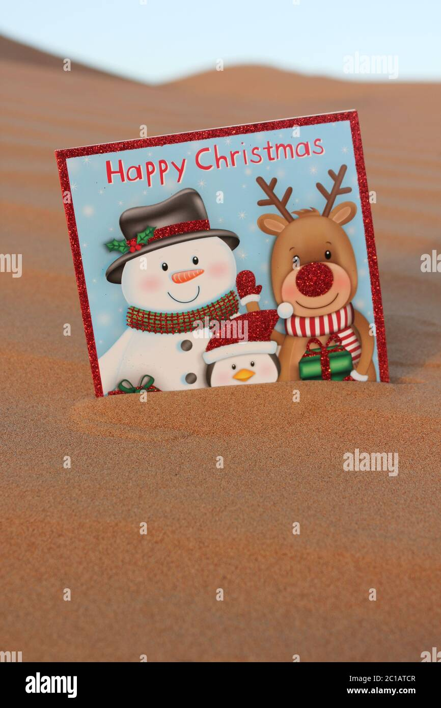 Holiday Cards Coastal Christmas Happy Holidays Christmas Card Sets Christmas Greeting Card Merry /& Bright Beach Surfboards
